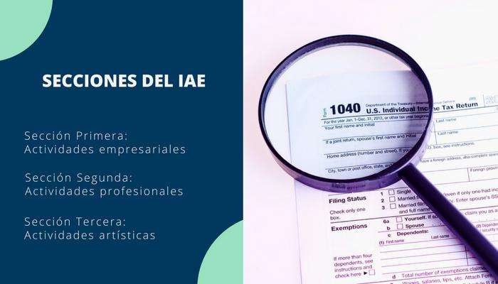 Secciones del IAE