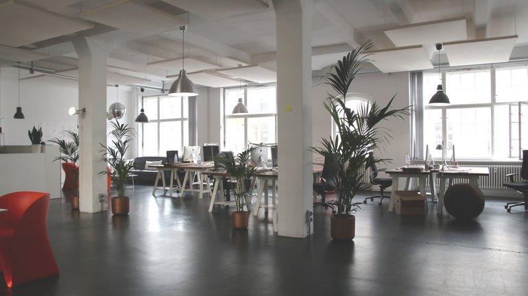 ¿Cómo escoger una oficina?